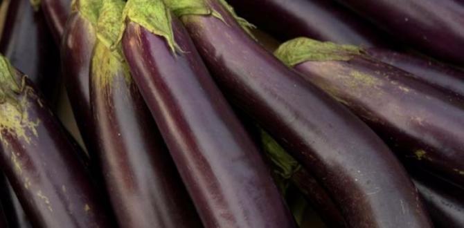 Patlıcan alırken buna çok dikkat edin!