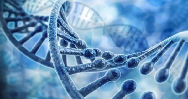 Bilim insanları eksikliği otizme neden olabilen bir gen keşfetti