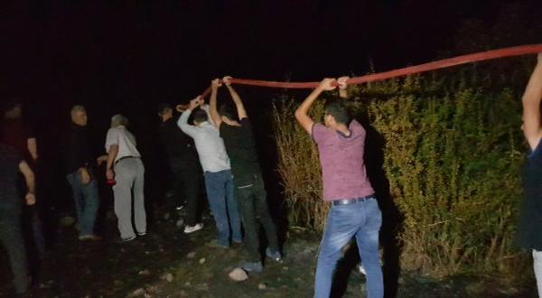 Kovanları yanan arılar köylülere saldırdı