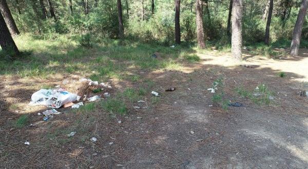 Piknikçiler Aydos Ormanı'nı çöplüğe çevirdi