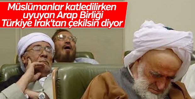 Arap Birliği'nin hedefi Türkiye