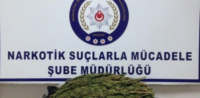 Bingöl 'de 6,5 kilo esrar ele geçirildi