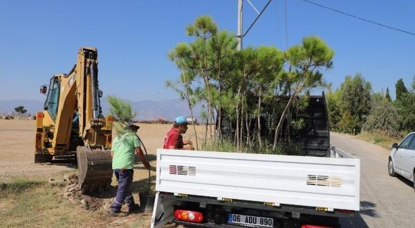 Turgutlu'nın kırsal mahalleleri ağaçlandırılıyor