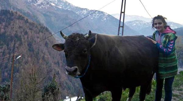 Hayvansever Bahar, 4 üncü Üniversite Olarak Veterinerlik Okuyor