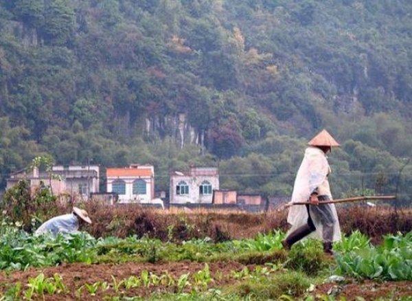 Çin'de sivillere sosyal davranış puanı verilecek