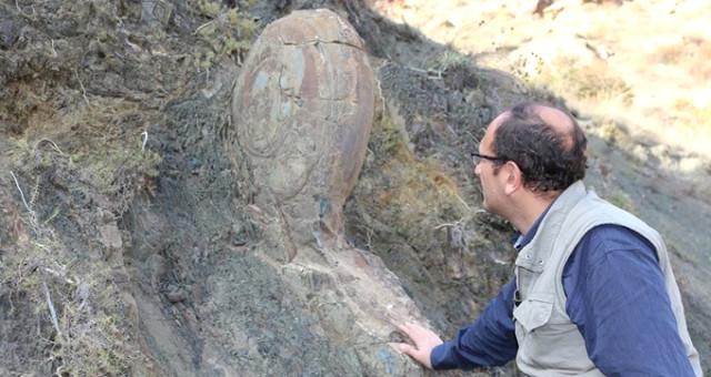 Erzurum'da Yer Alan 70 Milyon Yıllık Kaya Salyangoz Yerinde Korumaya Alınacak