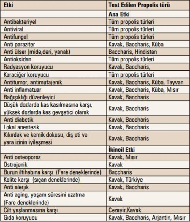 propolisin-faydalari