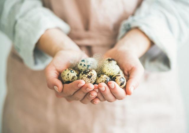 bildircin-yumurtasinin-faydalari