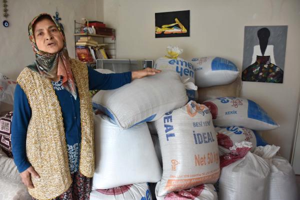 Kredi Çekerek Astronotların Yiyeceği 'Kinoa' Üretti, Elinde Kaldı