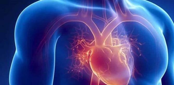 Nabız sayısı kaç olmalıdır? Kalp atışının süratli olması hangi hastalıkların habercisidir?